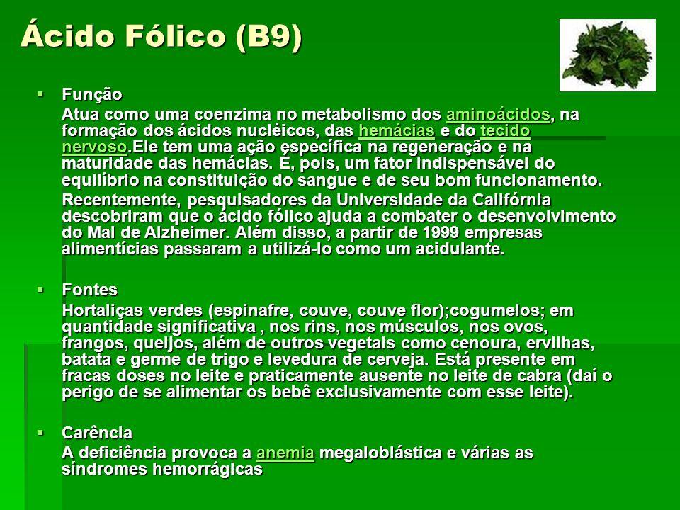 Ácido Fólico (B9) Função