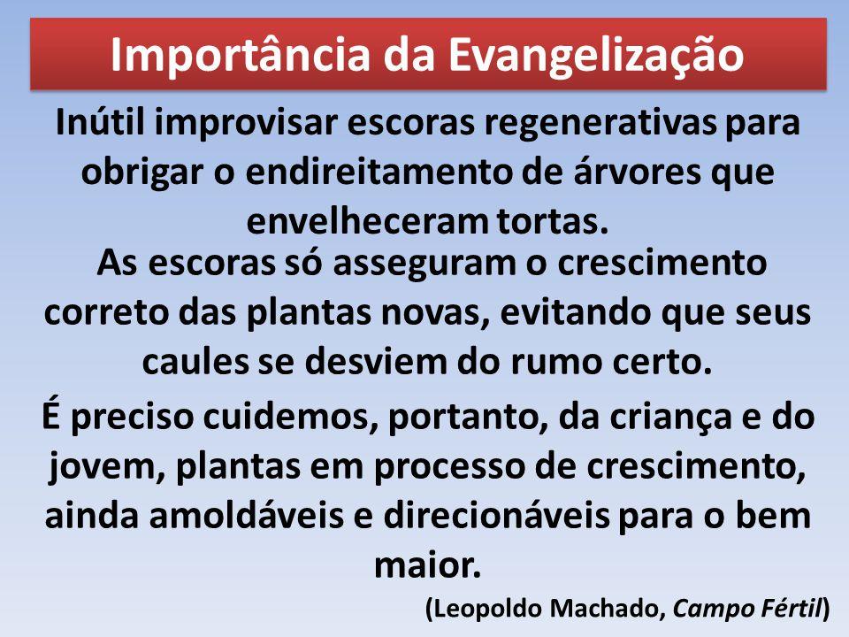 Importância da Evangelização (Leopoldo Machado, Campo Fértil)