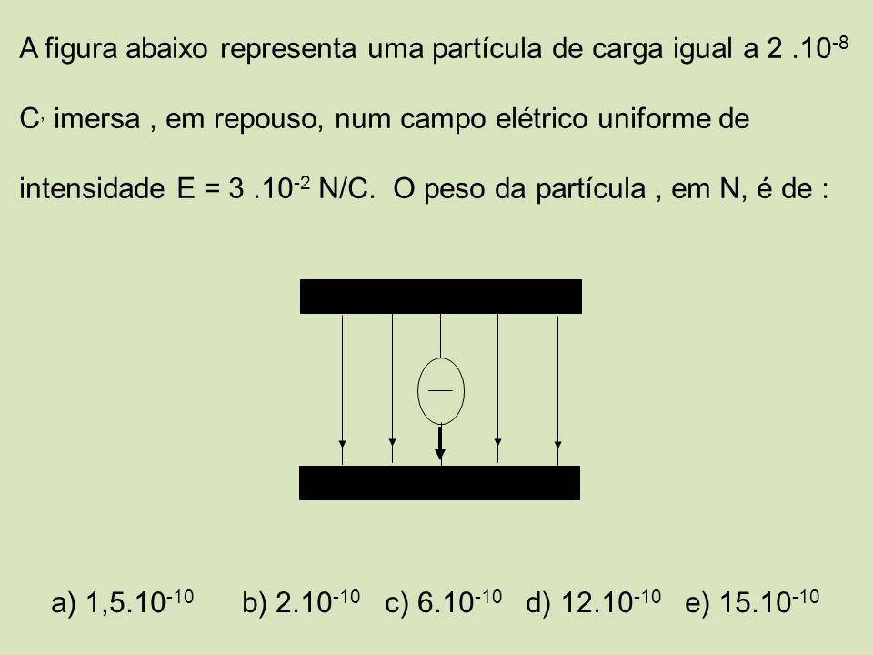 A figura abaixo representa uma partícula de carga igual a 2