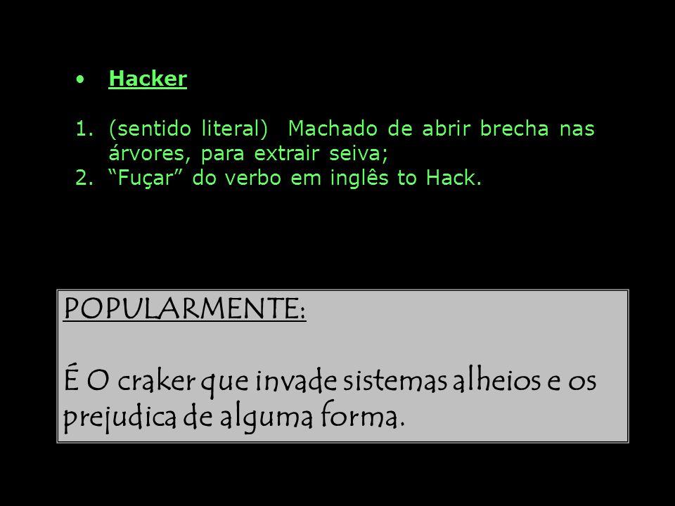 É O craker que invade sistemas alheios e os prejudica de alguma forma.