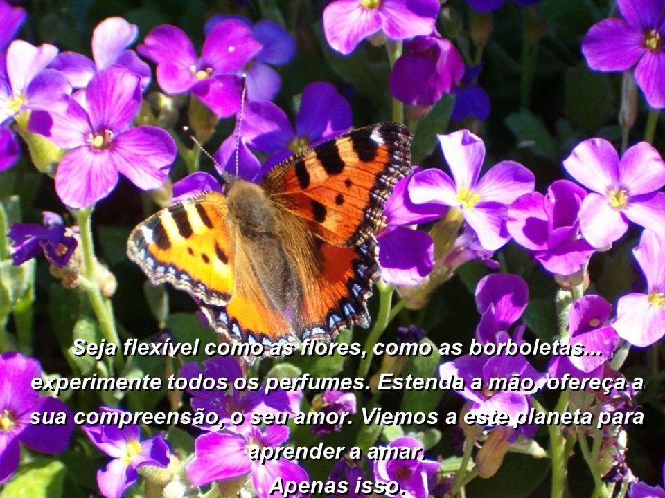 Seja flexível como as flores, como as borboletas