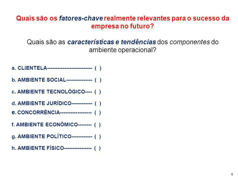 Quais são os fatores-chave realmente relevantes para o sucesso da empresa no futuro