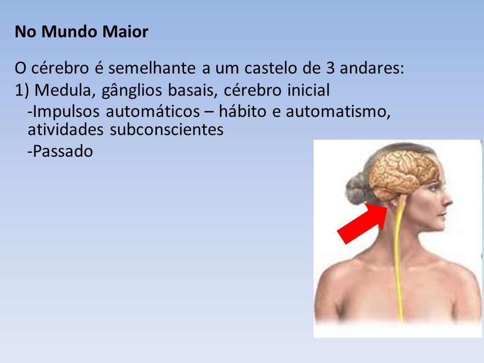 No Mundo Maior O cérebro é semelhante a um castelo de 3 andares: 1) Medula, gânglios basais, cérebro inicial -Impulsos automáticos – hábito e automatismo, atividades subconscientes -Passado