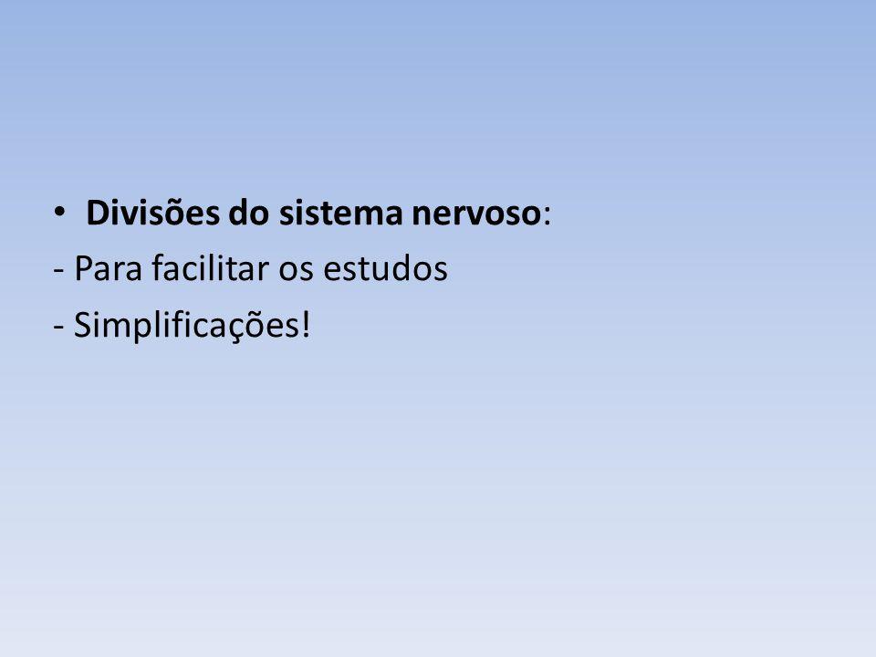 Divisões do sistema nervoso: