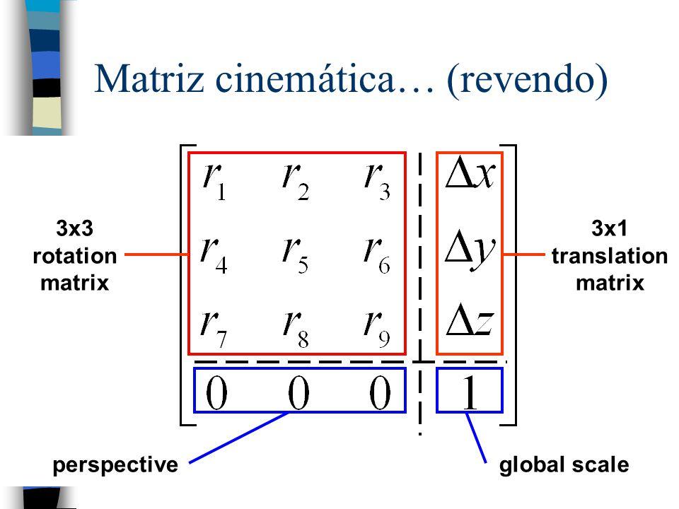 Matriz cinemática… (revendo)