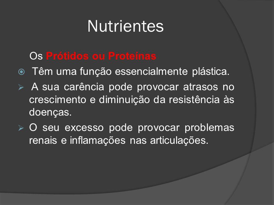Nutrientes Os Prótidos ou Proteínas