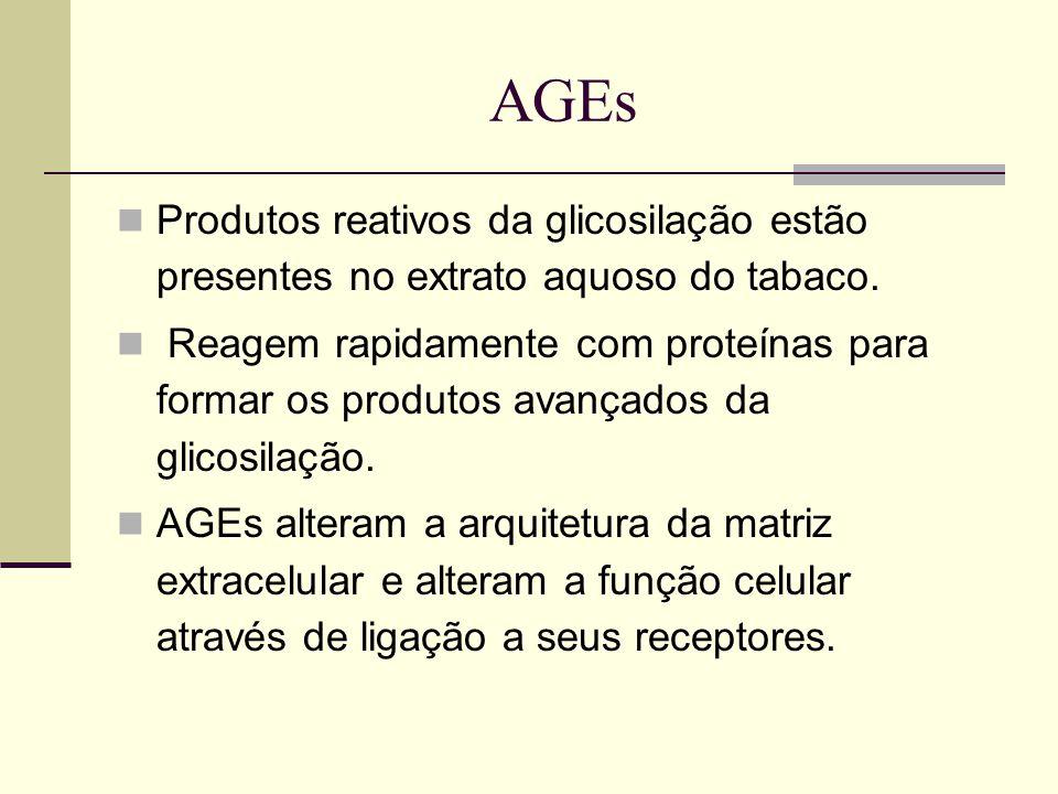 AGEs Produtos reativos da glicosilação estão presentes no extrato aquoso do tabaco.