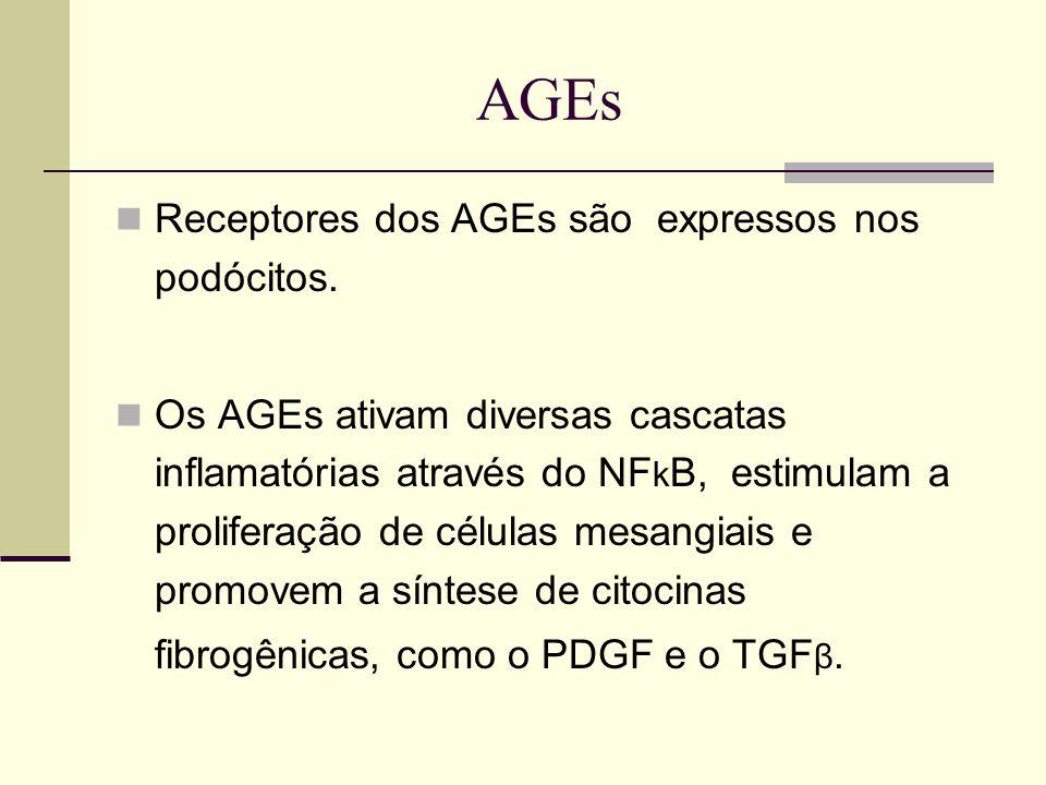 AGEs Receptores dos AGEs são expressos nos podócitos.