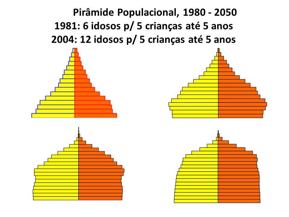 Pirâmide Populacional, 1980 - 2050