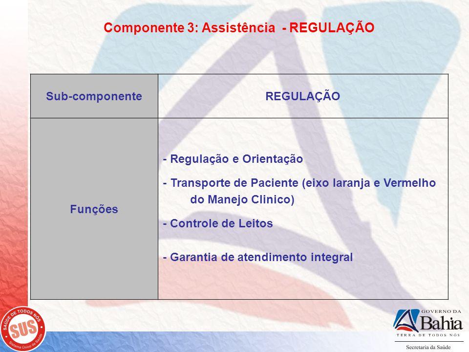 Componente 3: Assistência - REGULAÇÃO