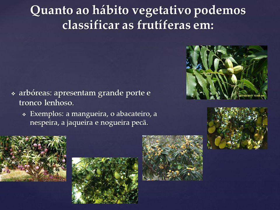Quanto ao hábito vegetativo podemos classificar as frutíferas em: