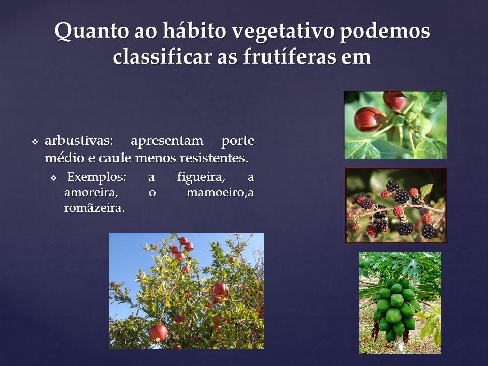 Quanto ao hábito vegetativo podemos classificar as frutíferas em