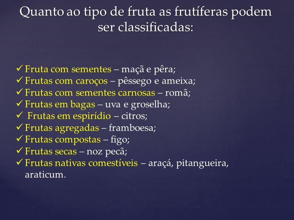 Quanto ao tipo de fruta as frutíferas podem ser classificadas: