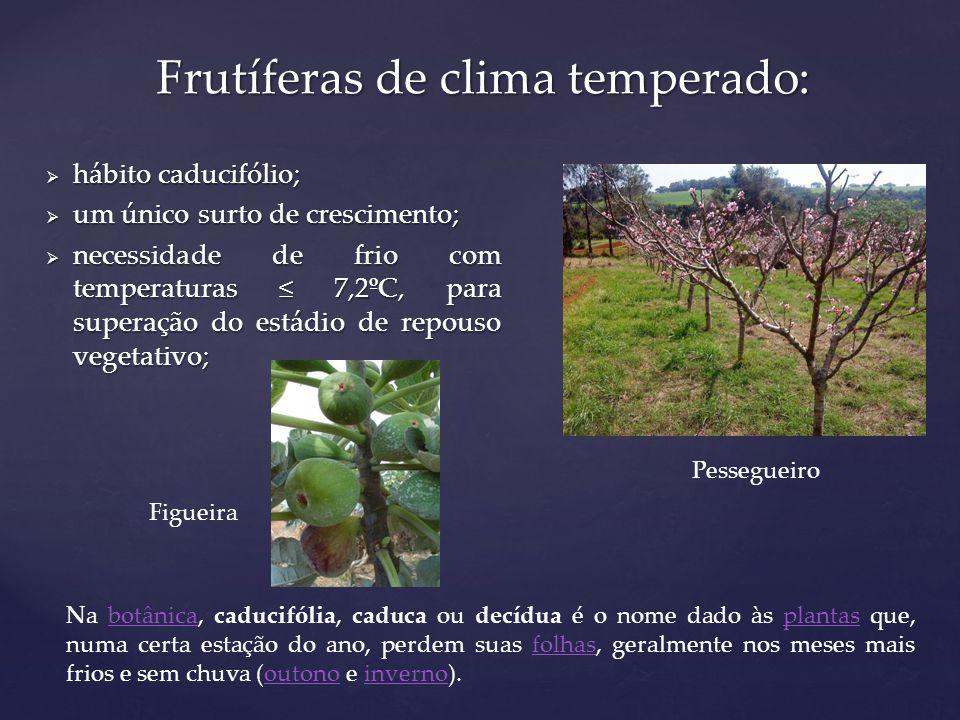 Frutíferas de clima temperado: