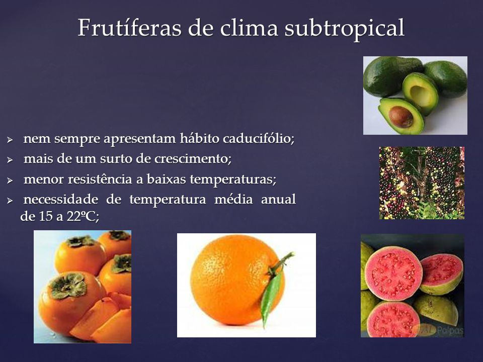 Frutíferas de clima subtropical