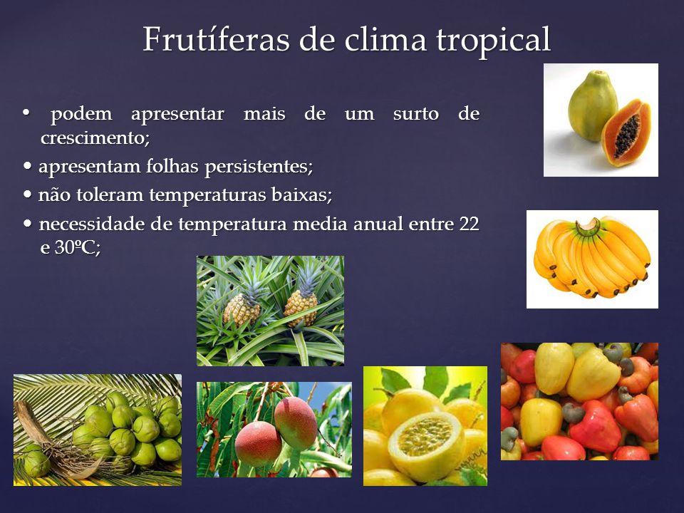 Frutíferas de clima tropical