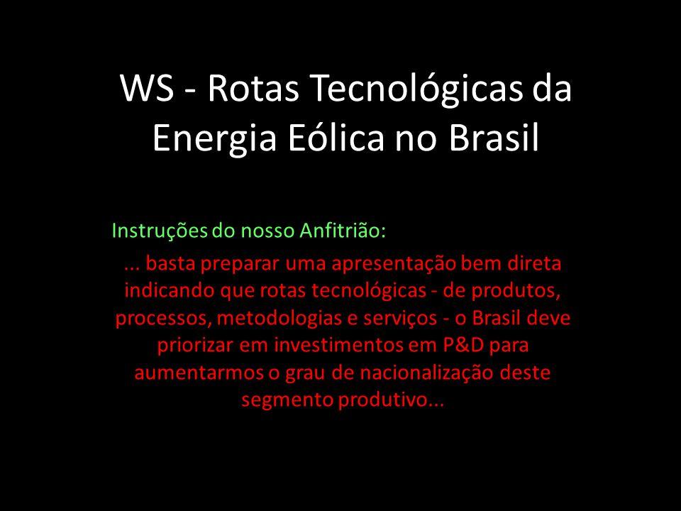 WS - Rotas Tecnológicas da Energia Eólica no Brasil