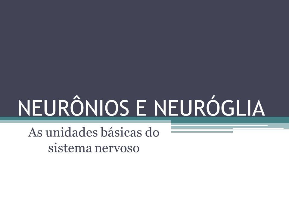 As unidades básicas do sistema nervoso