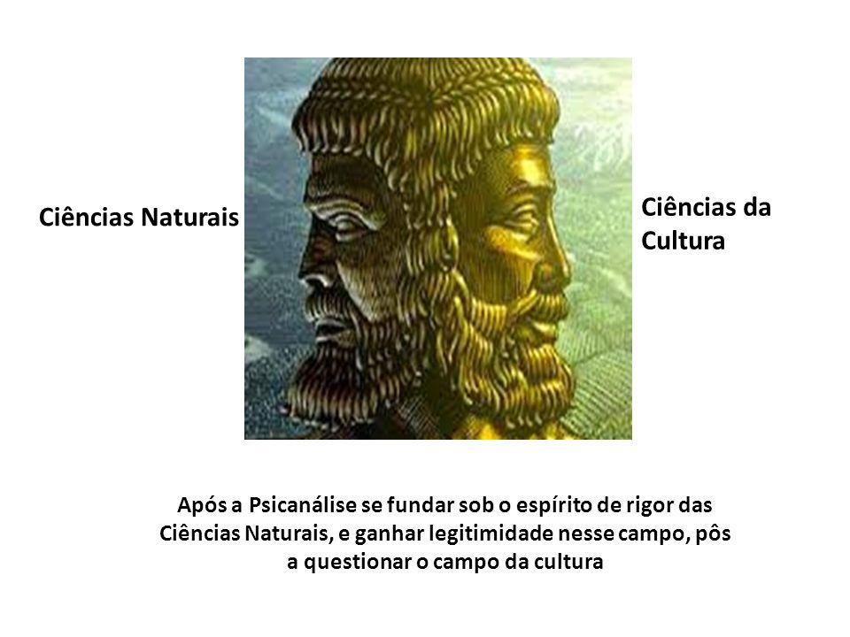 Ciências da Cultura Ciências Naturais