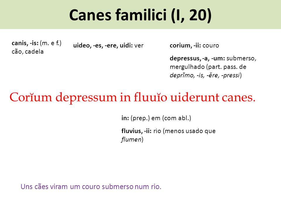 Canes familici (I, 20) Corĭum depressum in fluuĭo uiderunt canes.