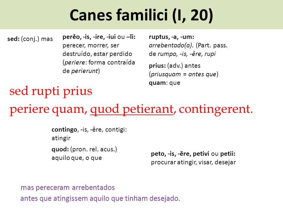 Canes familici (I, 20) perěo, -is, -ire, -iui ou –ĭi: perecer, morrer, ser destruído, estar perdido (periere: forma contraída de perierunt)