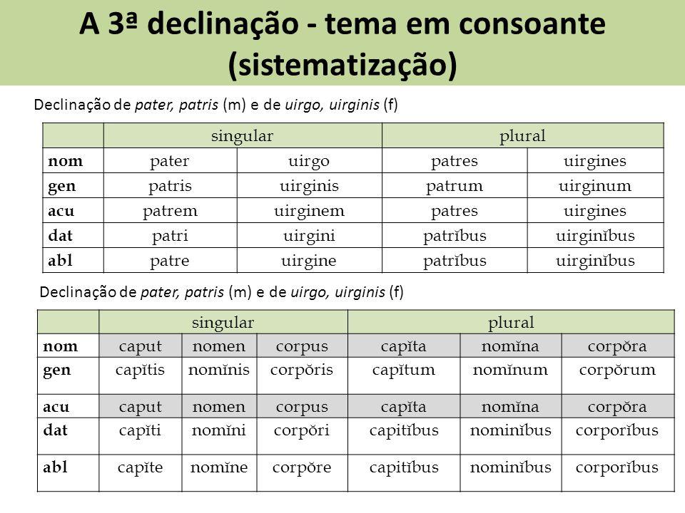 A 3ª declinação - tema em consoante (sistematização)