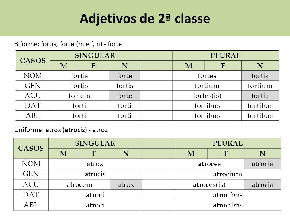 Adjetivos de 2ª classe Biforme: fortis, forte (m e f, n) - forte CASOS