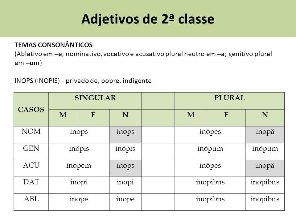 Adjetivos de 2ª classe TEMAS CONSONÂNTICOS