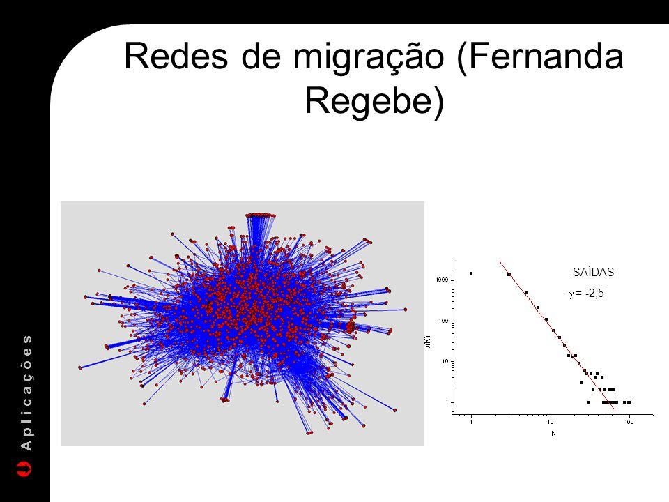 Redes de migração (Fernanda Regebe)