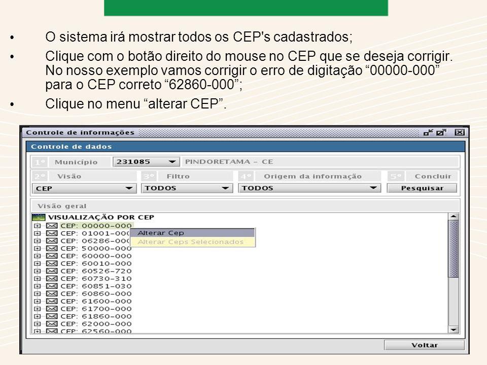 O sistema irá mostrar todos os CEP s cadastrados;