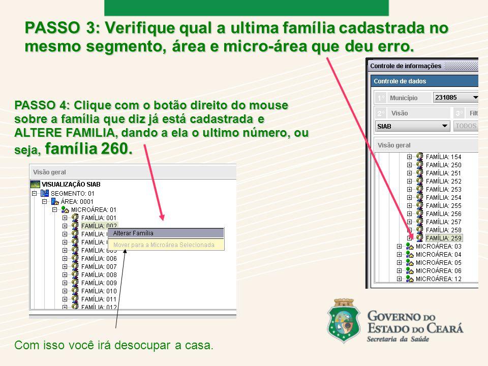 PASSO 3: Verifique qual a ultima família cadastrada no mesmo segmento, área e micro-área que deu erro.