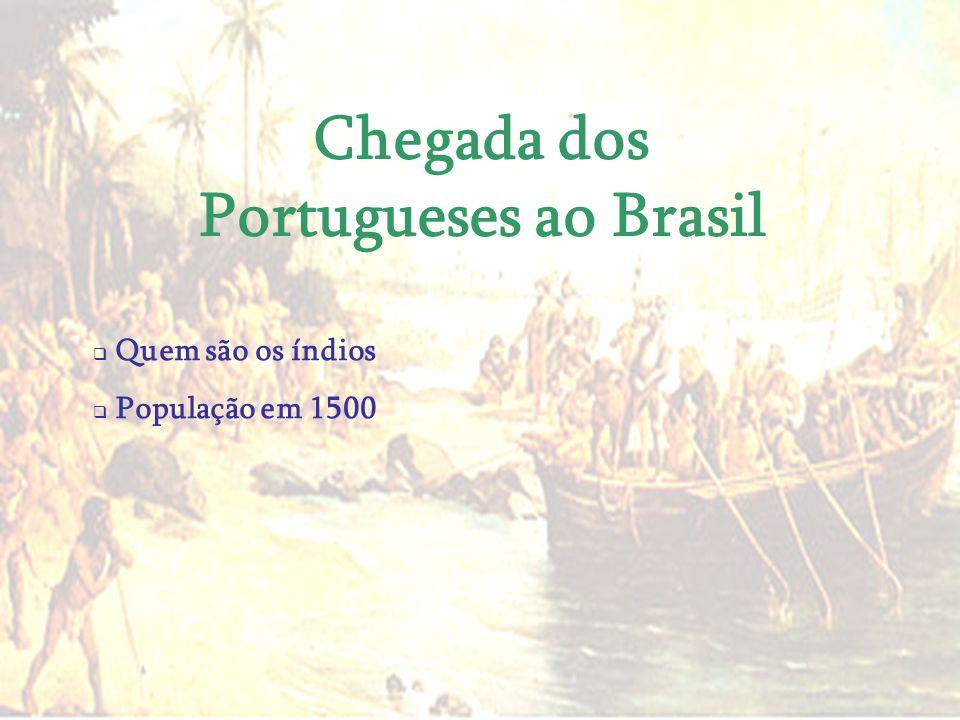 Chegada dos Portugueses ao Brasil