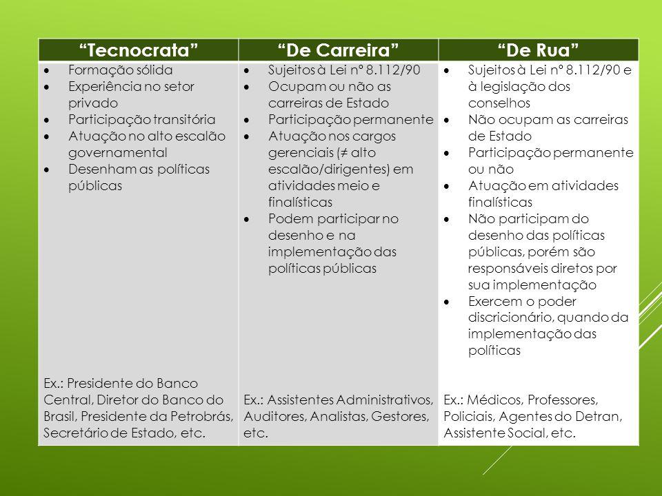 Tecnocrata De Carreira De Rua