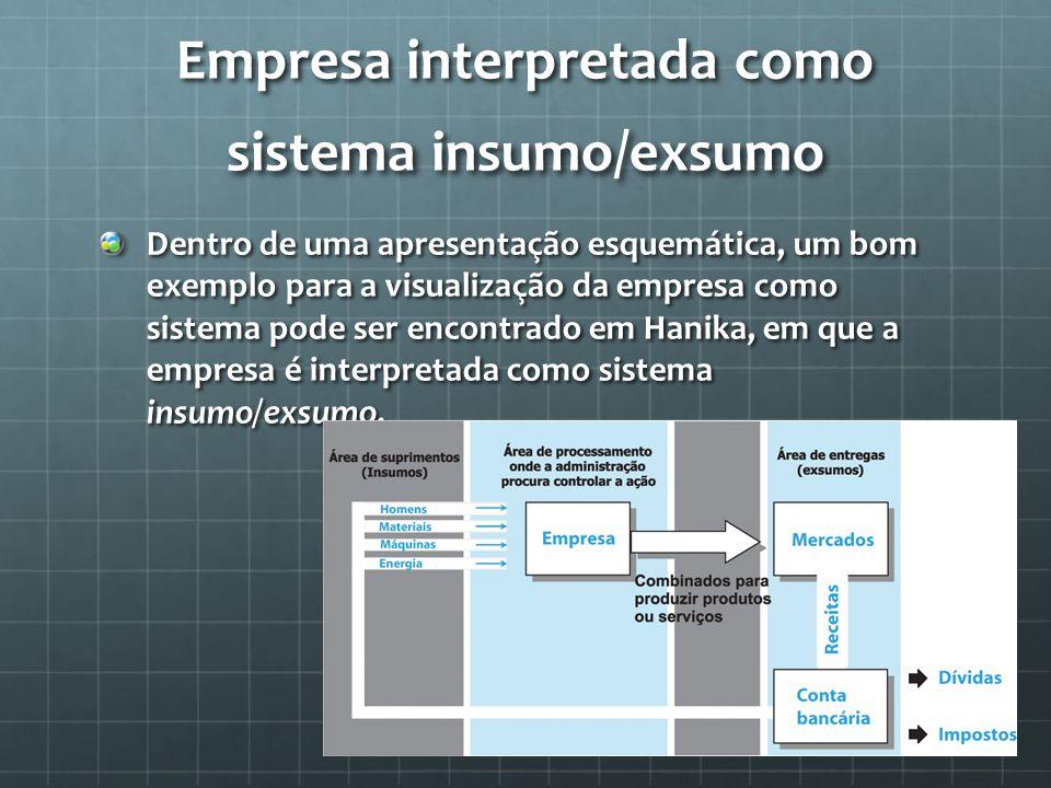Empresa interpretada como sistema insumo/exsumo
