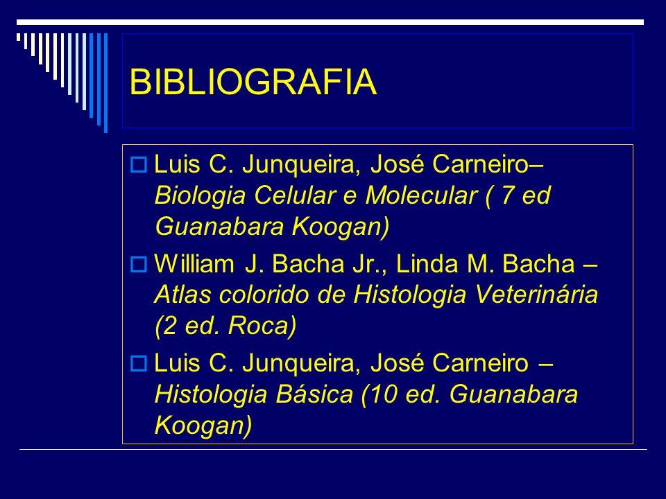BIBLIOGRAFIA Luis C. Junqueira, José Carneiro– Biologia Celular e Molecular ( 7 ed Guanabara Koogan)