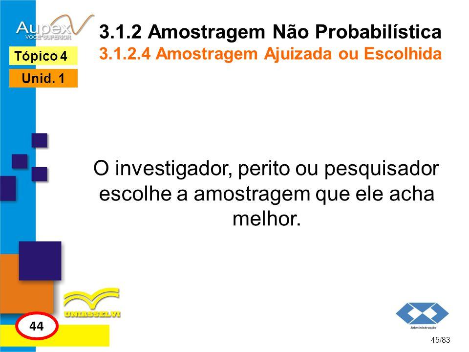 3. 1. 2 Amostragem Não Probabilística 3. 1. 2