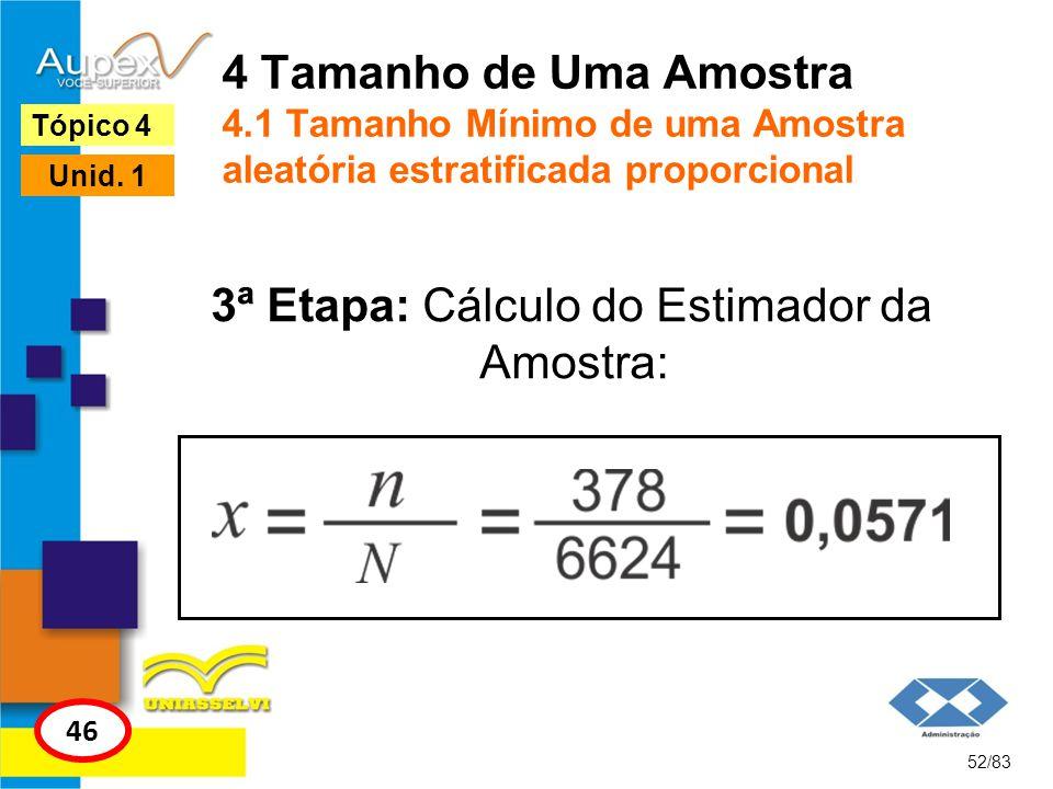 3ª Etapa: Cálculo do Estimador da Amostra: