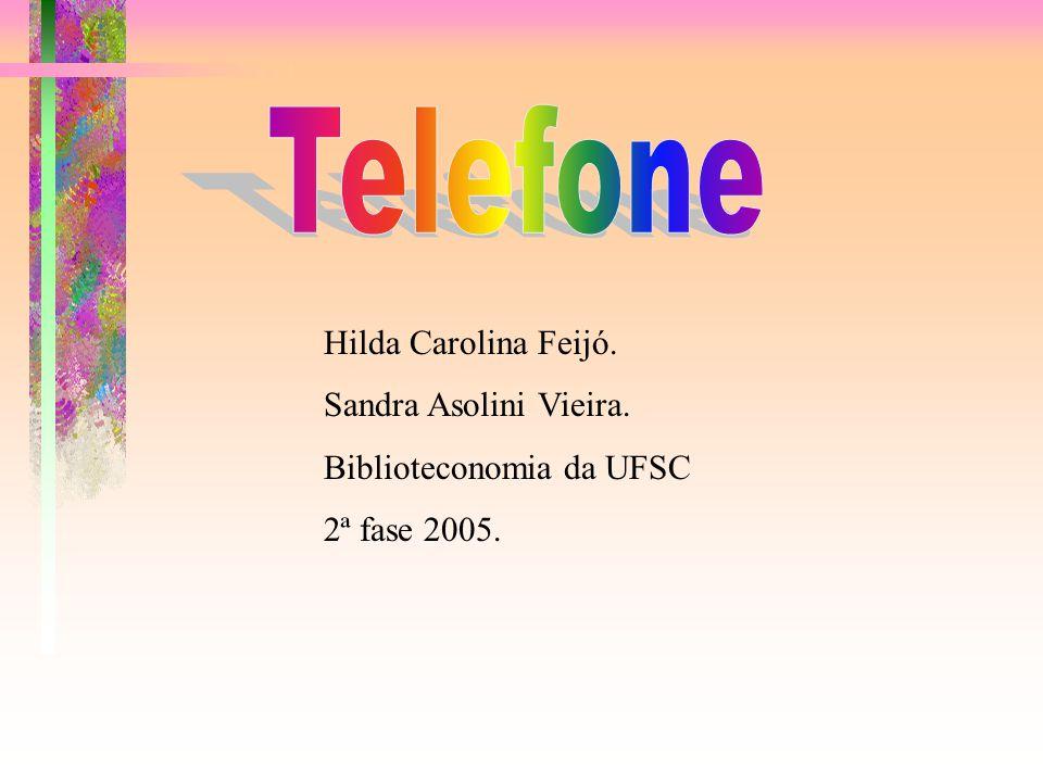 Telefone Hilda Carolina Feijó. Sandra Asolini Vieira.