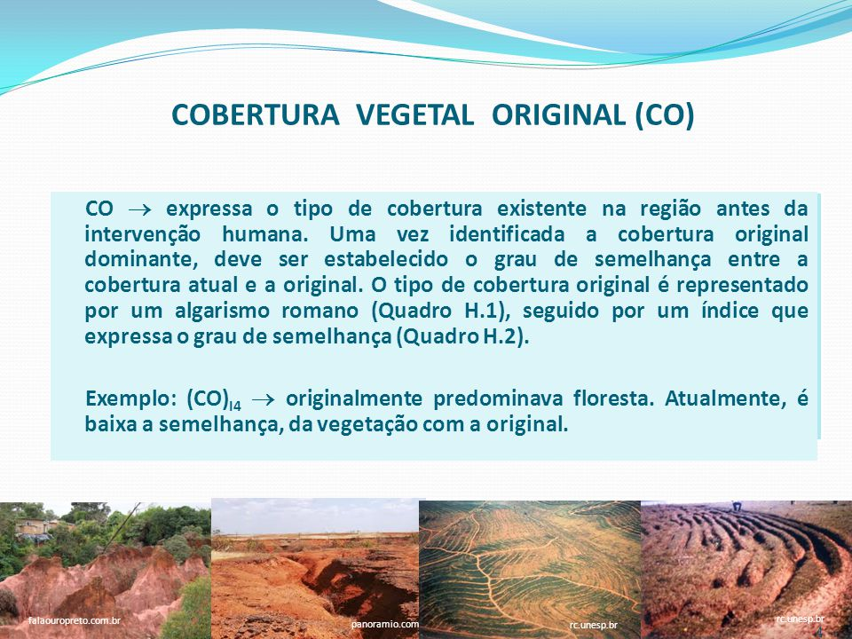 COBERTURA VEGETAL ORIGINAL (CO)