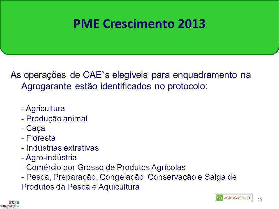 PME Crescimento 2013 As operações de CAE`s elegíveis para enquadramento na Agrogarante estão identificados no protocolo: