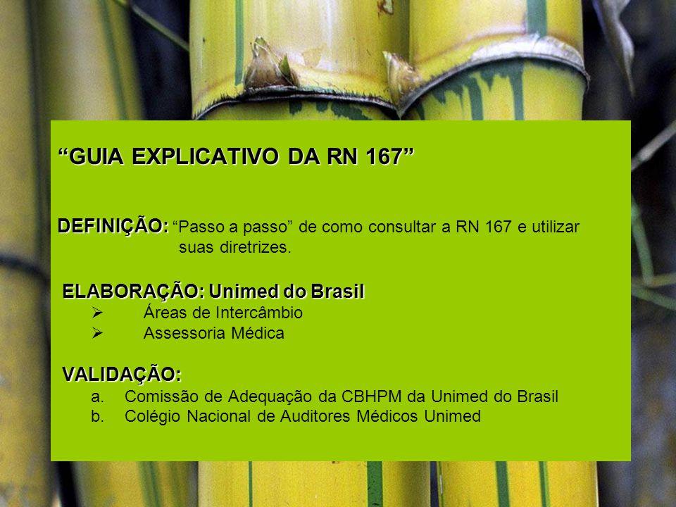 GUIA EXPLICATIVO DA RN 167
