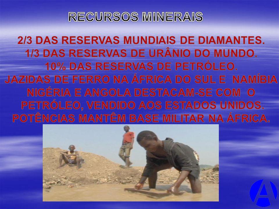 RECURSOS MINERAIS 2/3 DAS RESERVAS MUNDIAIS DE DIAMANTES.