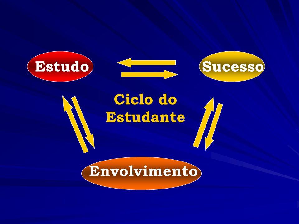 Estudo Sucesso Ciclo do Estudante Envolvimento