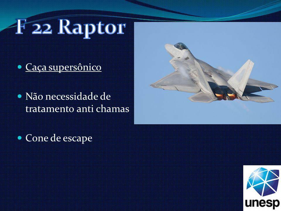 F 22 Raptor Caça supersônico Não necessidade de tratamento anti chamas