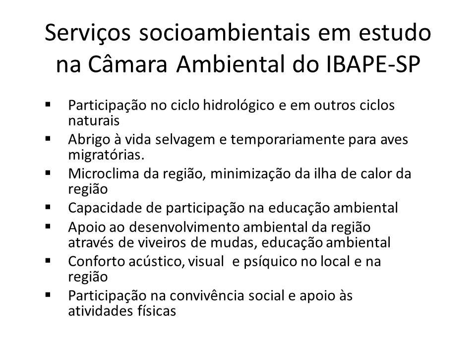 Serviços socioambientais em estudo na Câmara Ambiental do IBAPE-SP