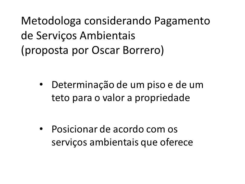 Metodologa considerando Pagamento de Serviços Ambientais (proposta por Oscar Borrero)