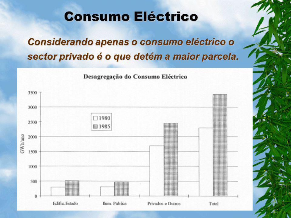 Consumo Eléctrico Considerando apenas o consumo eléctrico o sector privado é o que detém a maior parcela.