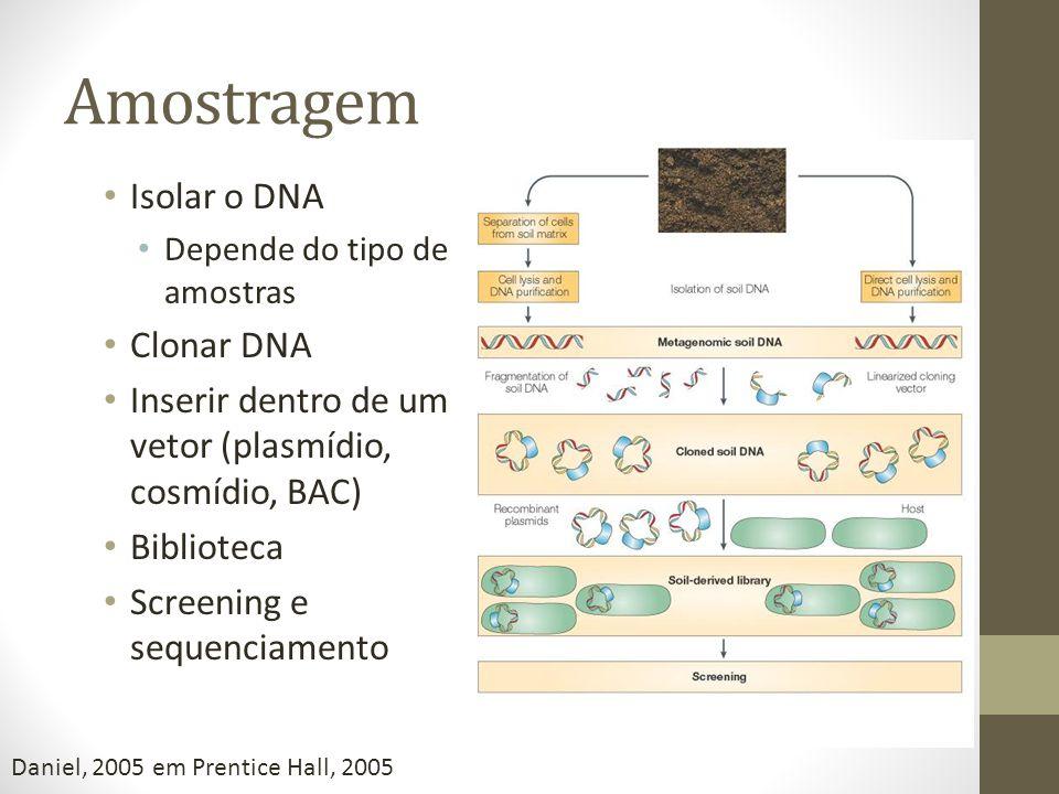 Amostragem Isolar o DNA Clonar DNA
