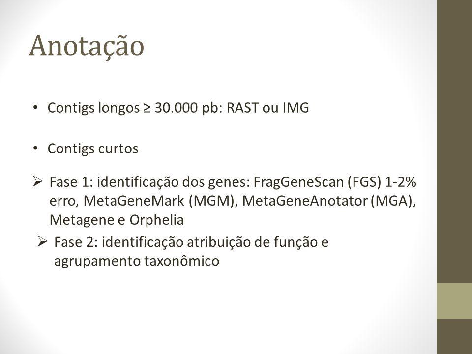 Anotação Contigs longos ≥ 30.000 pb: RAST ou IMG Contigs curtos