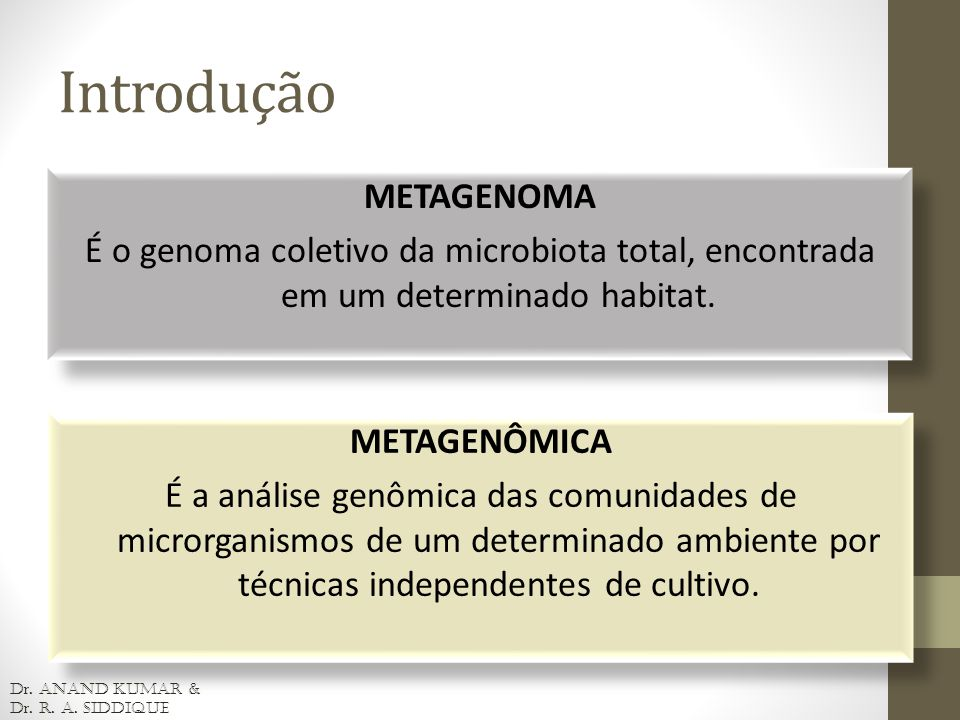 Introdução METAGENOMA